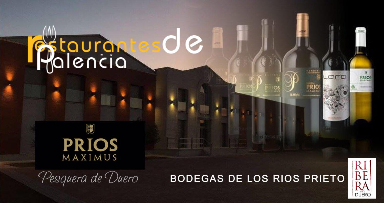 Restaurantes en Palencia y provincia